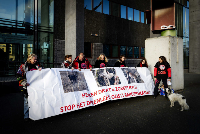 Actiegroepen, verenigd onder de naam 'Code Rood', lieten zich zien bij de rechtbank.