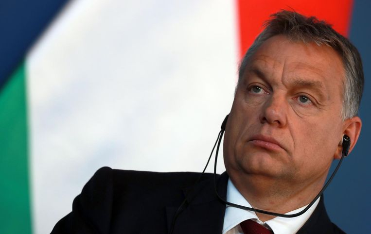 Viktor Orban, de premier van Hongarije. Beeld anp