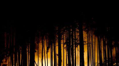 Honderden mensen geëvacueerd wegens bosbranden nabij Berlijn