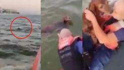 Amerikaanse kustwacht redt puppy uit water