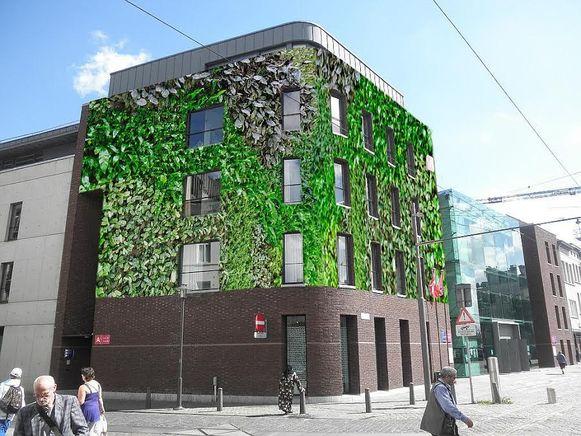 Verticale Tuin Woonkamer : Verticale tuin moet de coninckplein groen karakter geven antwerpen