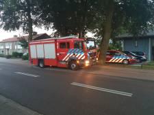 Brandje in pand van Pluryn snel geblust