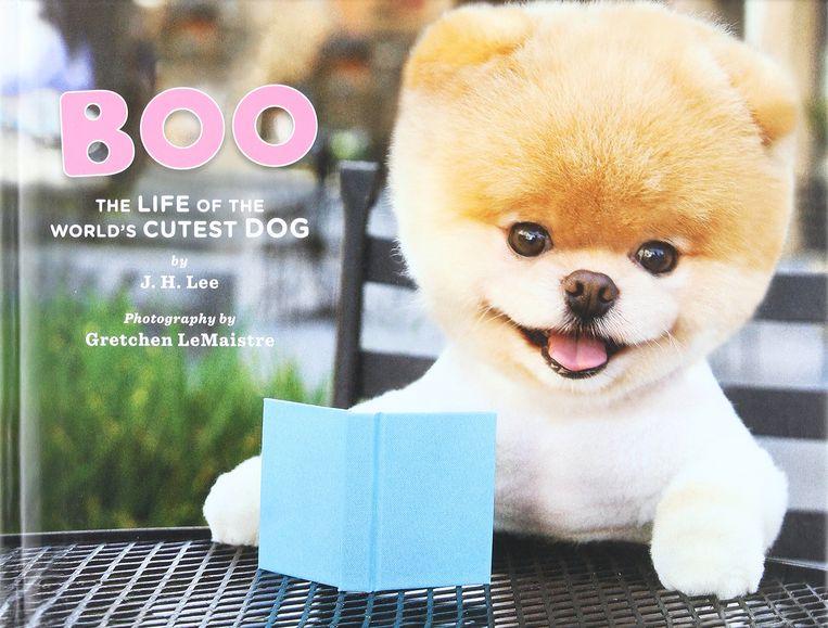 In 2011 verscheen een boek over de schattigste hond ter wereld.