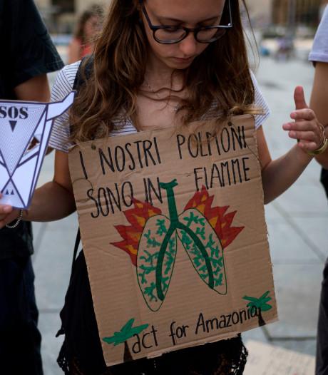 Plusieurs manifestations en Europe pour sauver l'Amazonie en feu