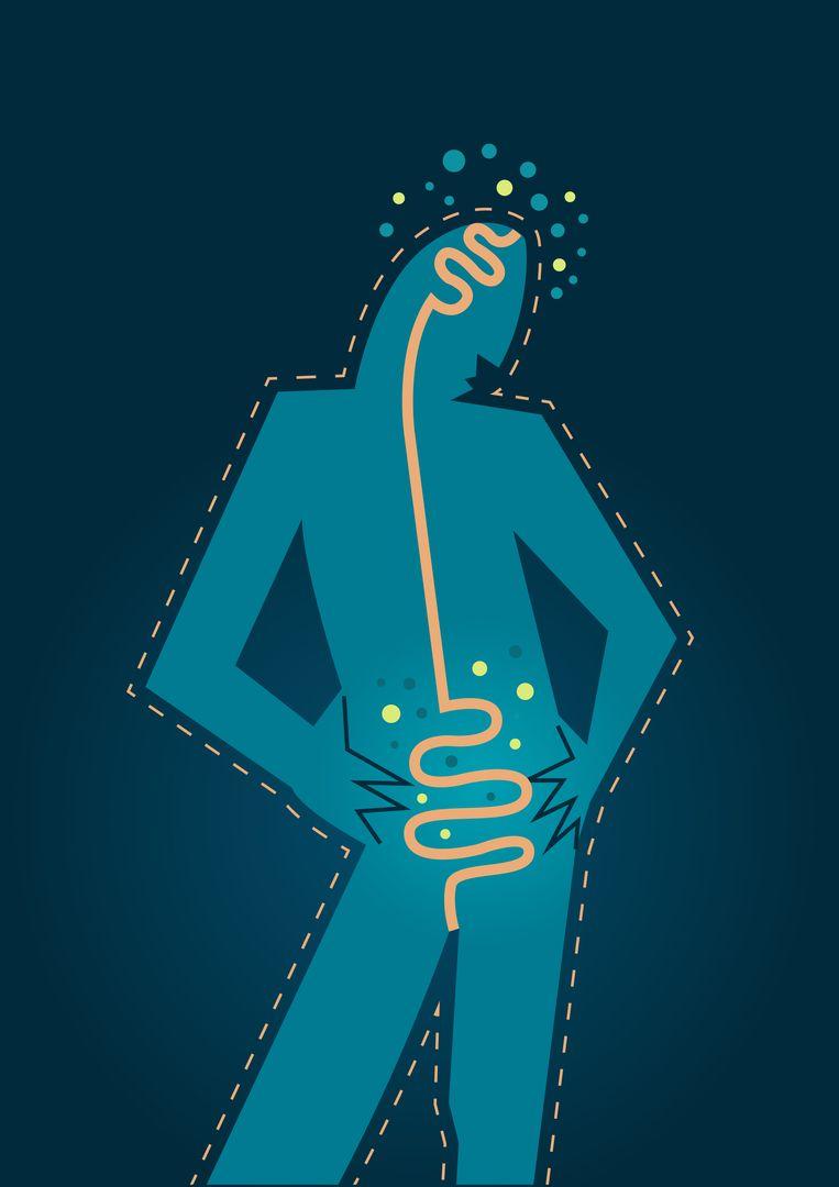 De communicatie tussen de darmen en de hersenen zou via een rechtstreekse 'snelweg'/zenuwbaan gebeuren.