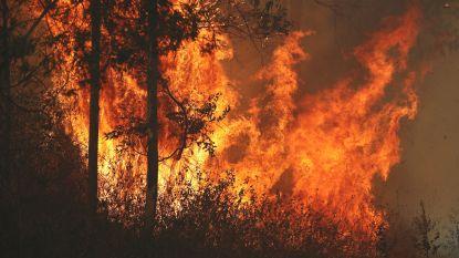 Bejaard echtpaar sterft door bosbrand in Australië