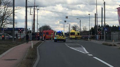 Fietser overleden na aanrijding met trein in Bornem