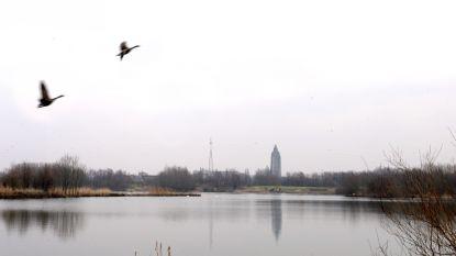 Stad organiseert uitdagende zoektocht aan de Donkvijver in Oudenaarde