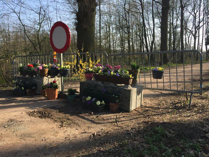 Van bloemen wordt iedereen blij dacht Gebi Rodenburg en dus versierde ze de wegafzetting op de grens tussen Nederland en België met bloemen.