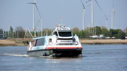 Nieuwe Vlaamse regering redt Antwerpse Waterbus