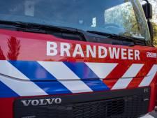 Twee auto's uitgebrand in Vlaardingen