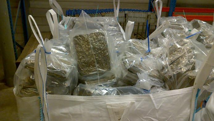 De politie vond 2800 kilogram hennep, verstopt in bloempotten.