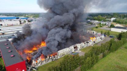 Felle brand vlak bij munitiebedrijf in Pelt onder controle: één brandweerman lichtgewond