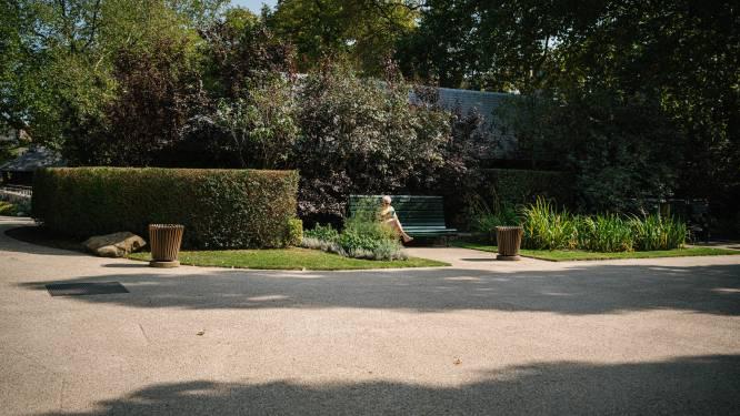 """Lockdown treft opnieuw Zoo en Planckendael: """"Dramatisch voor ons"""""""
