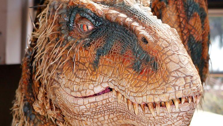 null Beeld Portland Jurassica