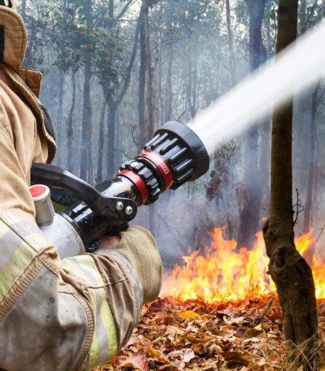Aantal brandmeldingen Brabant toegenomen door droge zomer