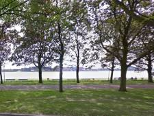 Schiedam onderzoekt of Maasboulevard afgesloten kan blijven