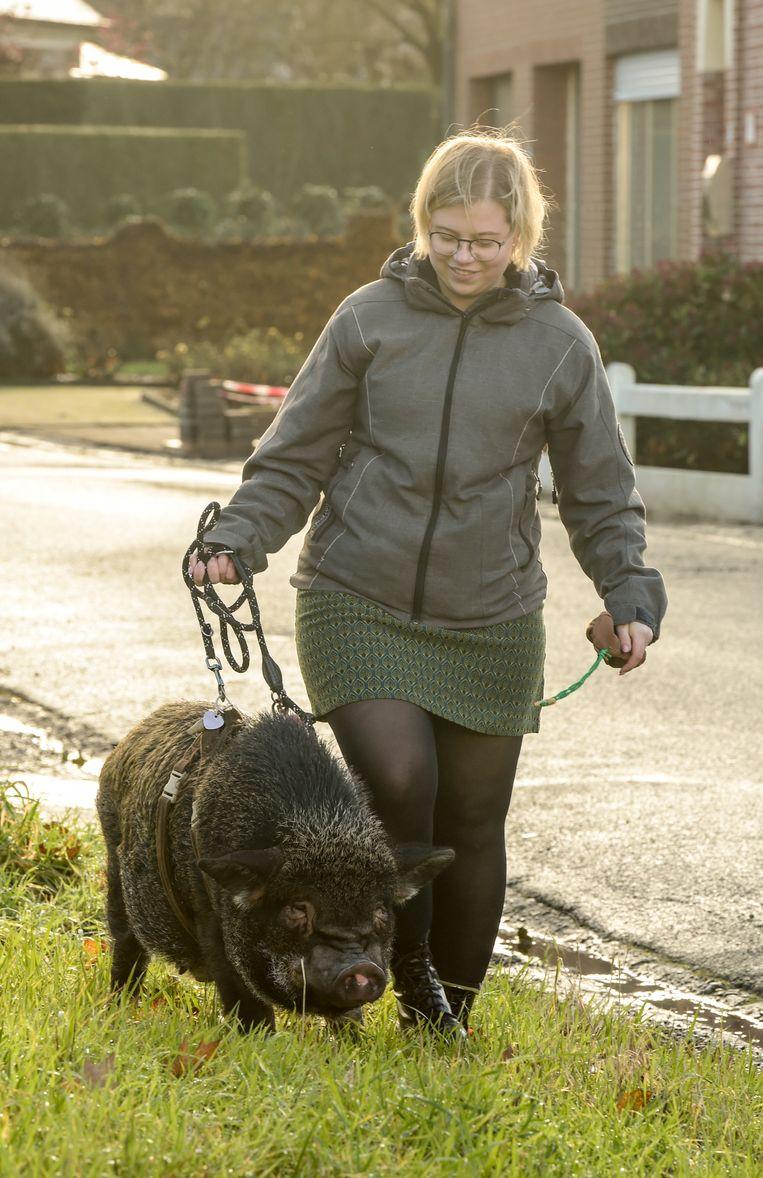 """Silke en Bacon op uitstap. """"Slim beestje maar bijzonder eigenwijs. Als hij tijdens een wandeling niet meer vooruit wil, zit er niets anders op dan hem te duwen""""."""