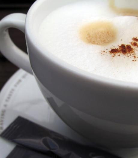 Gastvrije huiskamer in nieuw Koffiekaffee Dreischor
