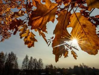 Lenteweer in de herfst: uitzonderlijk zacht en zonnig met temperaturen tot 16 graden
