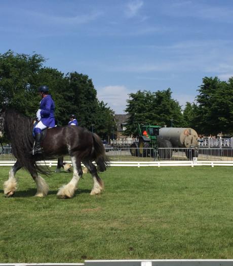 'Allemaal paardenvolk' op 115e Concours Hippique in Bergen op Zoom