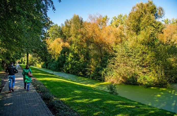 In de groene stroken aan de overkant van de sloot, komt straks de begraafplaats aan de Maeterlinckweg op Rotterdam-Zuid.