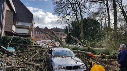 Gemeente neemt maatregelen tegen stormweer