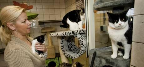'Gemeenten onderschatten kosten voor opvang van dieren'