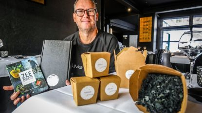 Interesse in zeewier groeit nu ook in België