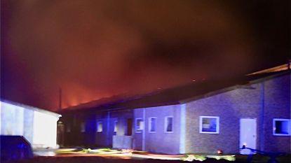 Zware brand verwoest varkensstal in Moerkerke: nog geen duidelijkheid over lot van aanwezige biggetjes
