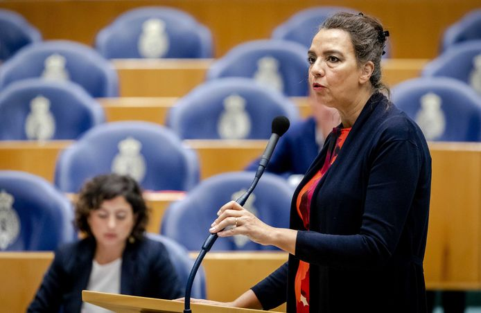 Isabelle Diks (GroenLinks) in november 2019 tijdens een debat in de Tweede Kamer over de begroting van Defensie.