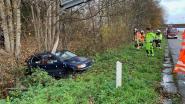 Bestuurder ongedeerd na tuimelperte in gracht langs E40