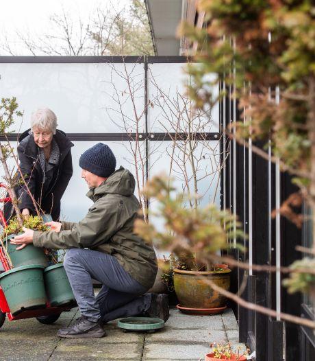 De zo gekoesterde bomen van Nelly (89) verhuizen van balkon in Breda naar bos bij Made