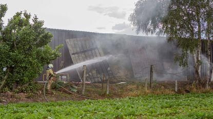 Tientallen balen hooi in brand bij boerderij in Manhovestraat