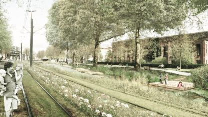 Stad wil oude waterlopen in ere herstellen