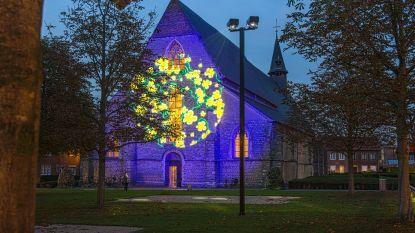 'Sint-Truiden by lights' door succes verlengd: mooiste gebouwen lichten op tot en met 2 februari