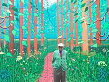 Livemuziek brengt Hockney tot leven op Museumplein