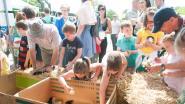 """Kinderen leven zich zondag uit in """"boerderijstraat"""""""