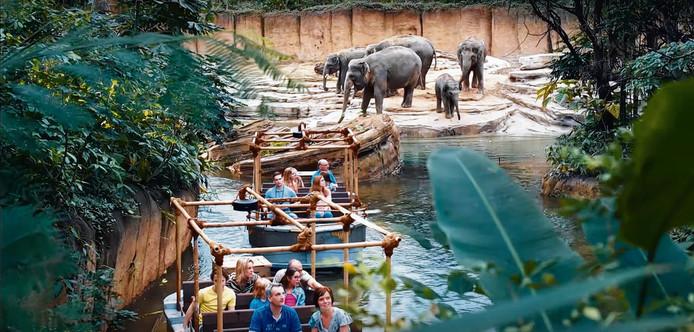 De samenvoeging van dierentuin en avonturenpark bezorgde Wildland een onduidelijke identiteit