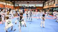 13 Landen op stage bij Taekwondoschool Keumgang