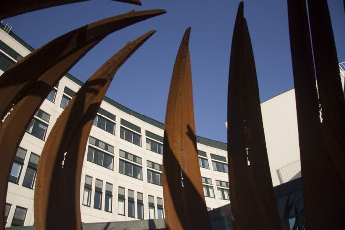 Kunstwerk bij hogeschool Saxion in Deventer. De school vreest krimp en banenverlies bij de vestigingen in Apeldoorn, Deventer en Enschede.