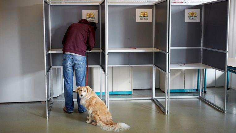 Meerdere landelijke kopstukken zijn naar de regio afgereisd. Zij zien de verkiezingen in Meierijstad als eerste graadmeter voor de landelijke verkiezingen over vier maanden. Beeld anp