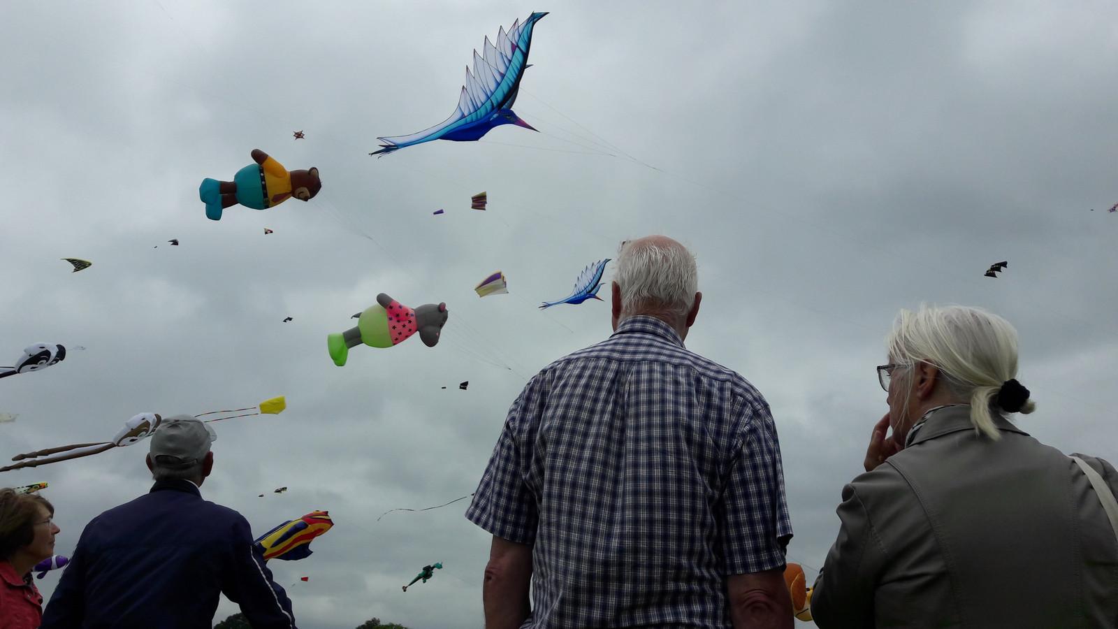 Vliegers boven Rijsbergen tijdens de Rijsbergse Vliegerdagen