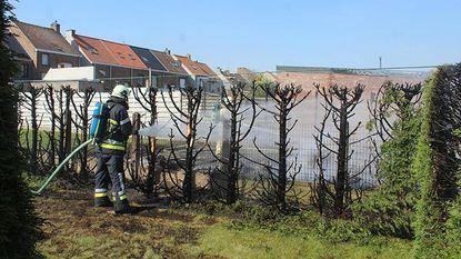 Man wil grasmaaier met benzine vullen: verbrand en tuinhuis vernield