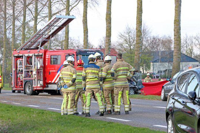 De auto kwam tot stilstand tegen een van de bomen langs de weg bij Espel.