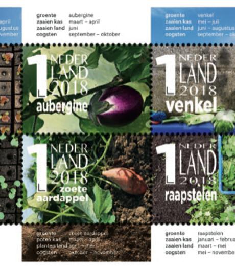 Het hele land likt aan  Arnhemse postzegels