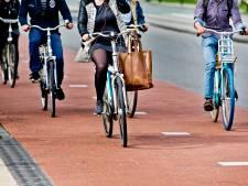 Het duurt nog wel even voor er een veiliger fietspad ligt tussen Spijk en Lobith, dit is waarom