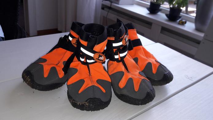 De schoentjes voor de honden uit Culemborg.