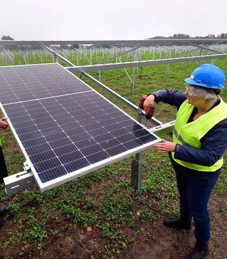 Eerste paneel van allereerste zonnepark gelegd: 'Nog 13.999 te gaan'
