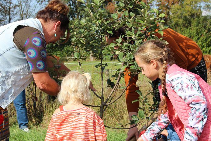 Sonja Busscher van Aard-lief in Harbrinkhoek in de moestuin van het kinderdagverblijf.
